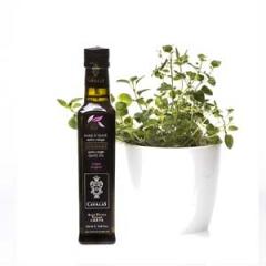Huile d'olive à l'origan Gourmet