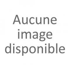 BONHOMME DE NEIGE 35gr
