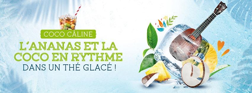 Thé-Glacé-Comptoir-français-du-thé
